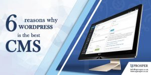6 Reasons why WordPress is the best CMS.